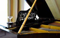 Grand piano details
